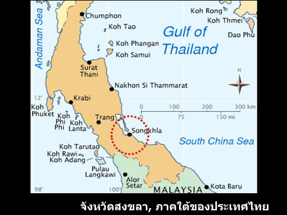 จังหวัดสงขลา, ภาคใต้ของประเทศไทย
