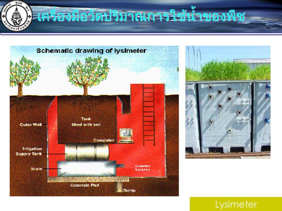 เครื่องมือวัดปริมาณการใช้น้ำของพืช
