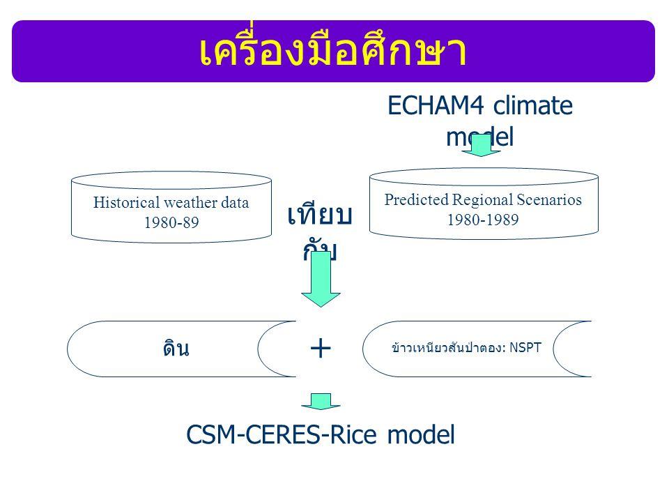 เครื่องมือศึกษา + เทียบกับ ECHAM4 climate model CSM-CERES-Rice model