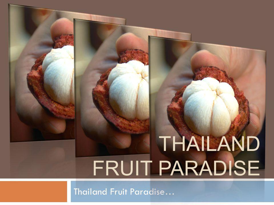 Thailand fruit paradise