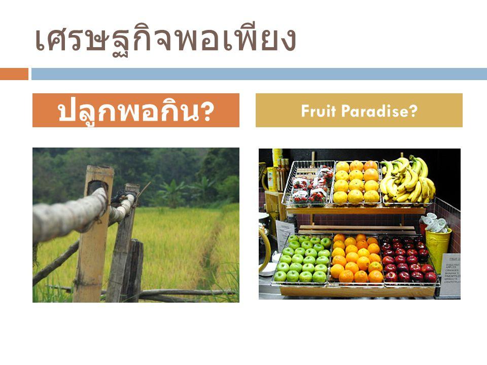 เศรษฐกิจพอเพียง ปลูกพอกิน Fruit Paradise
