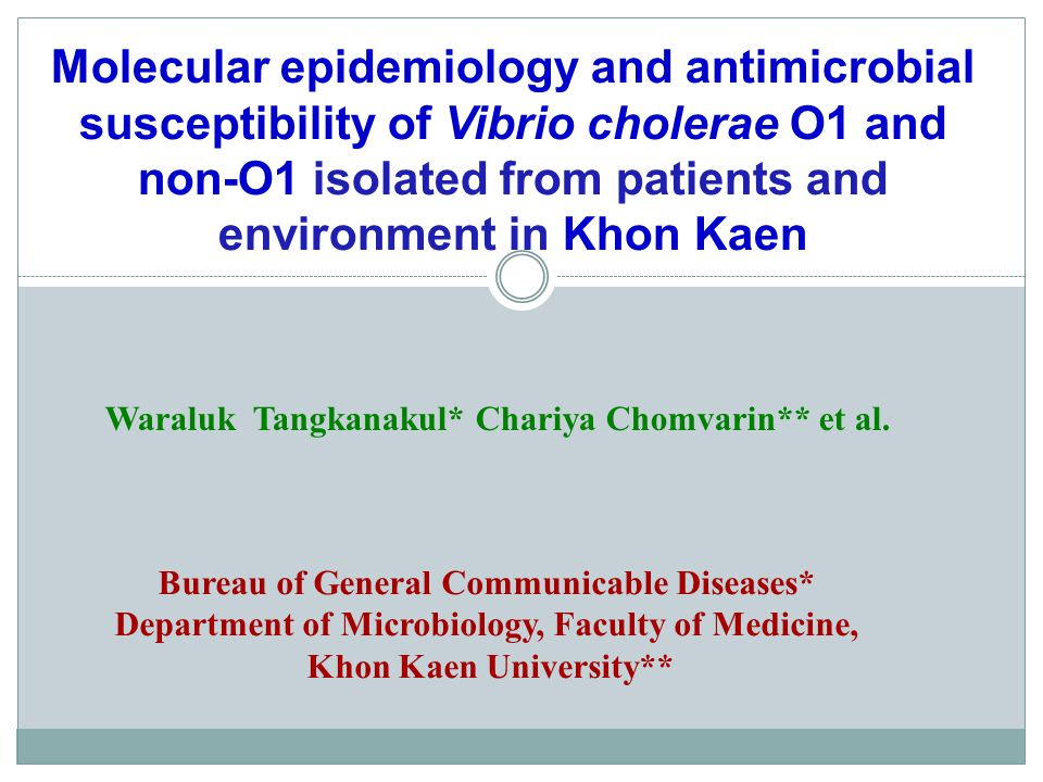 Molecular epidemiology and antimicrobial susceptibility of Vibrio cholerae O1 and non-O1 isolated from patients and environment in Khon Kaen