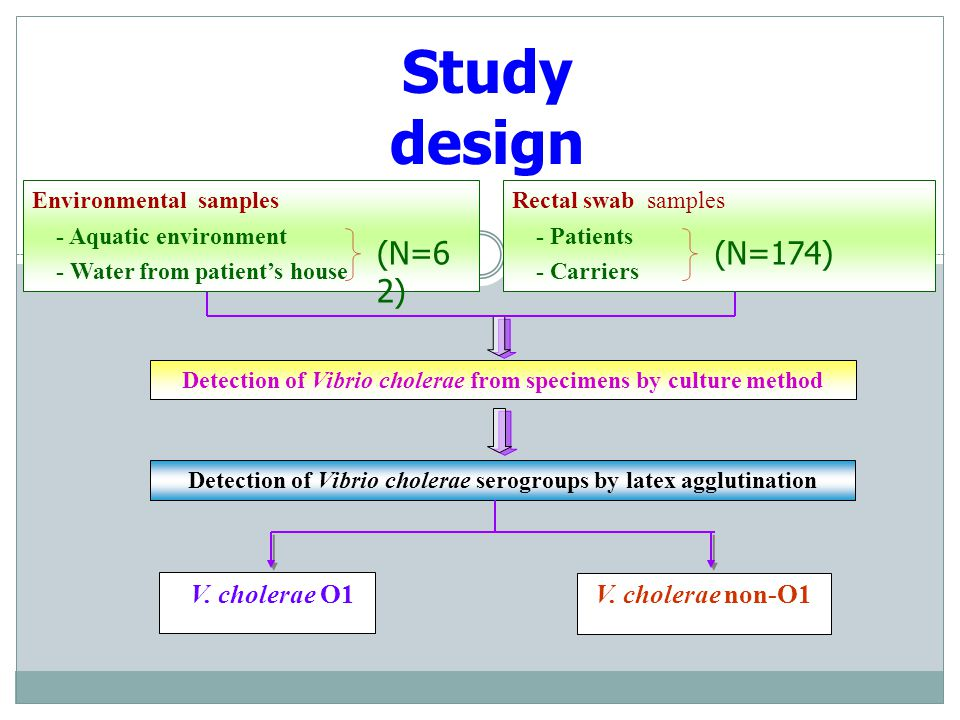 Study design (N=62) (N=174) V. cholerae O1 V. cholerae non-O1