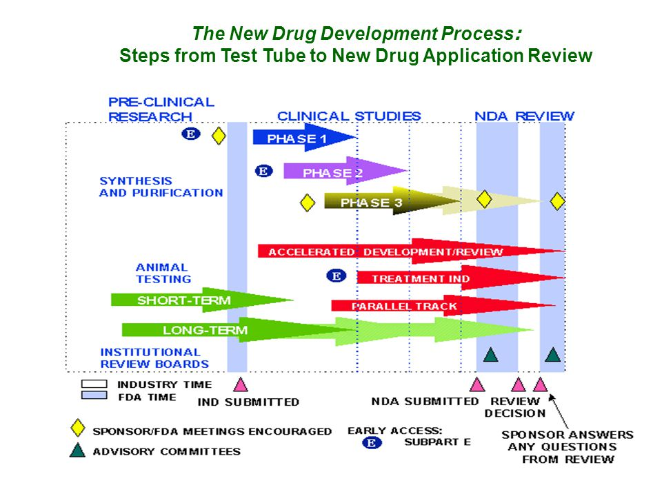 The New Drug Development Process: