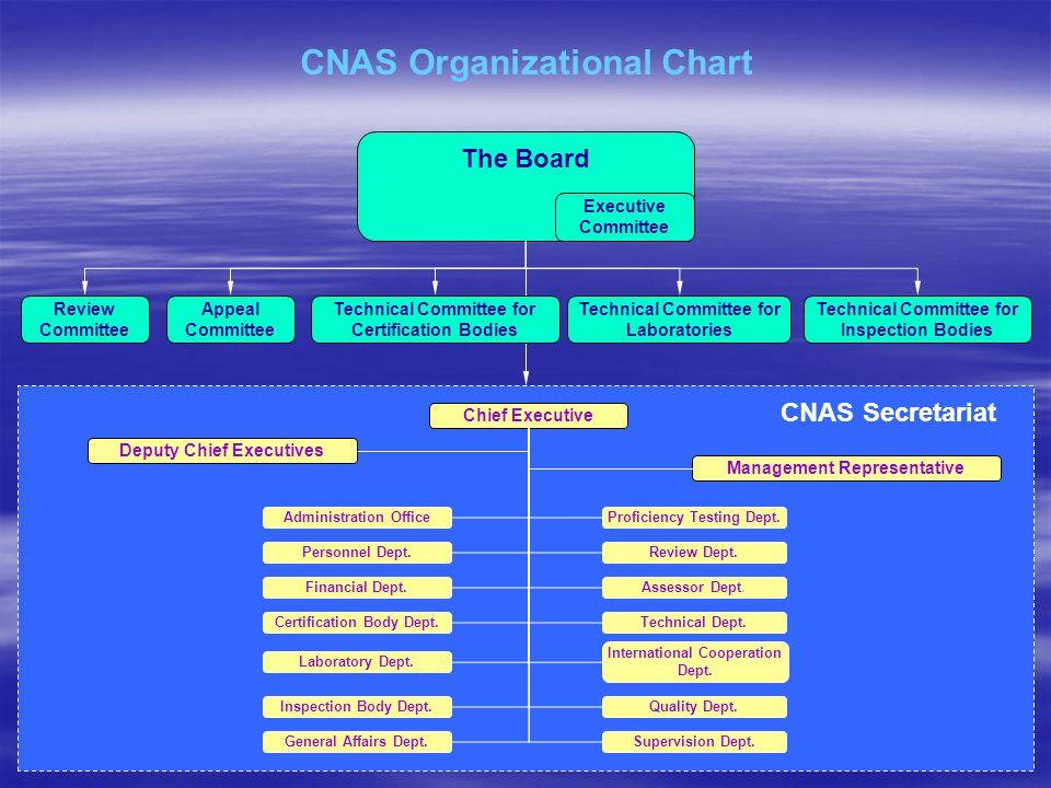 CNAS Organizational Chart