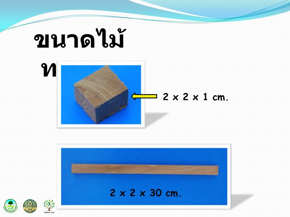 ขนาดไม้ทดลอง 2 x 2 x 1 cm. 2 x 2 x 30 cm.
