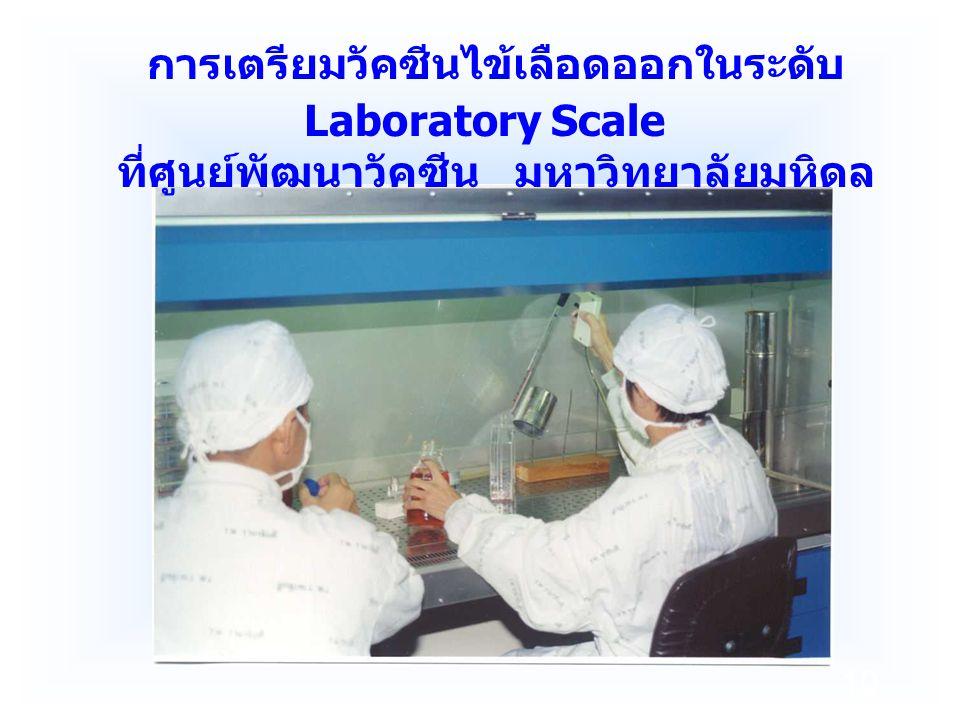 การเตรียมวัคซีนไข้เลือดออกในระดับ Laboratory Scale
