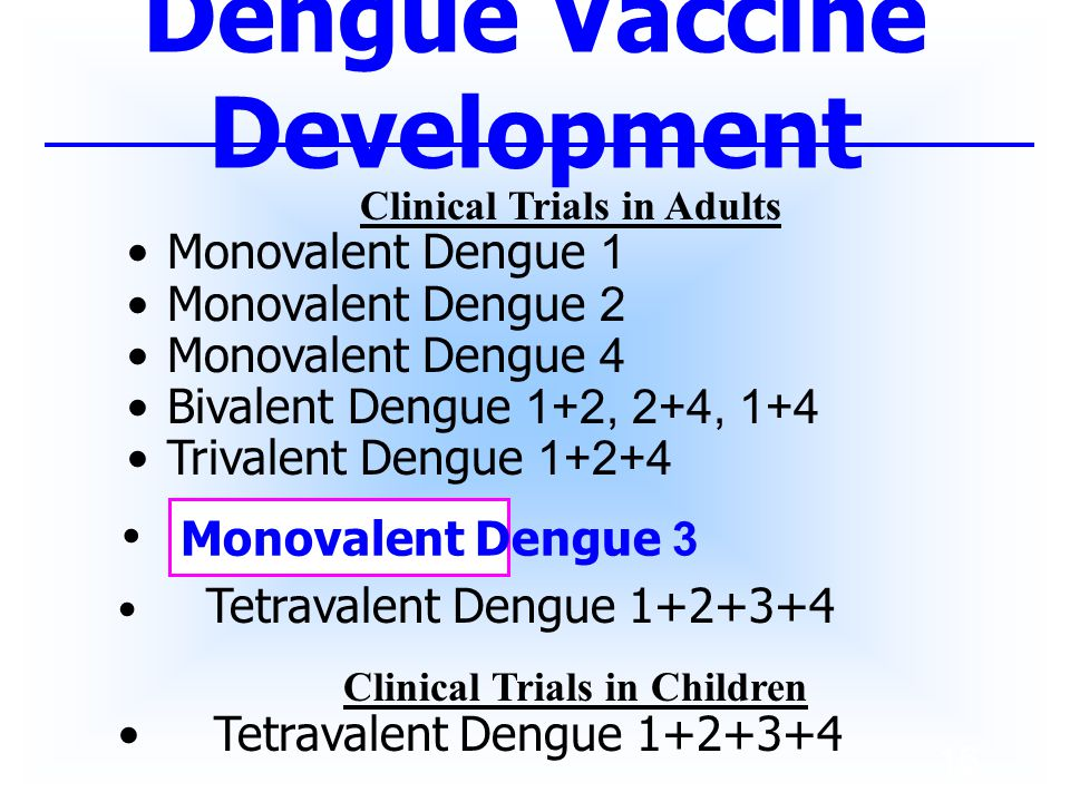 Dengue Vaccine Development