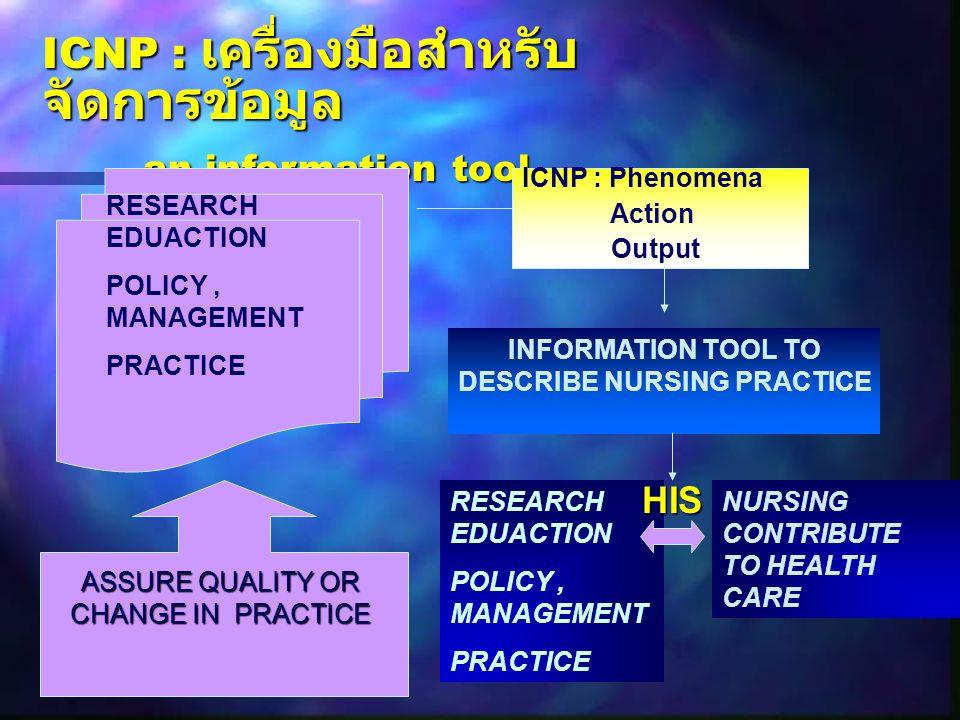 INFORMATION TOOL TO DESCRIBE NURSING PRACTICE