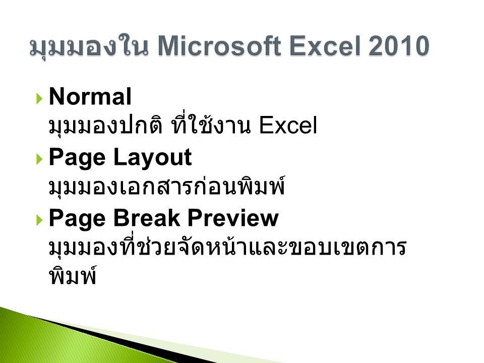 มุมมองใน Microsoft Excel 2010