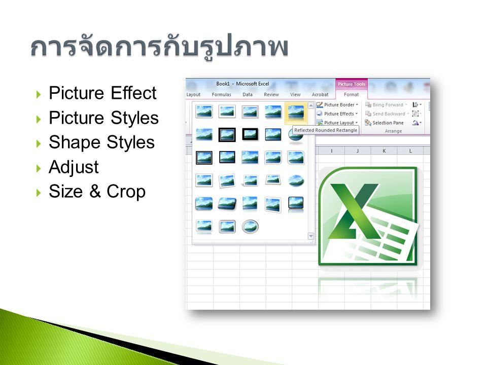การจัดการกับรูปภาพ Picture Effect Picture Styles Shape Styles Adjust