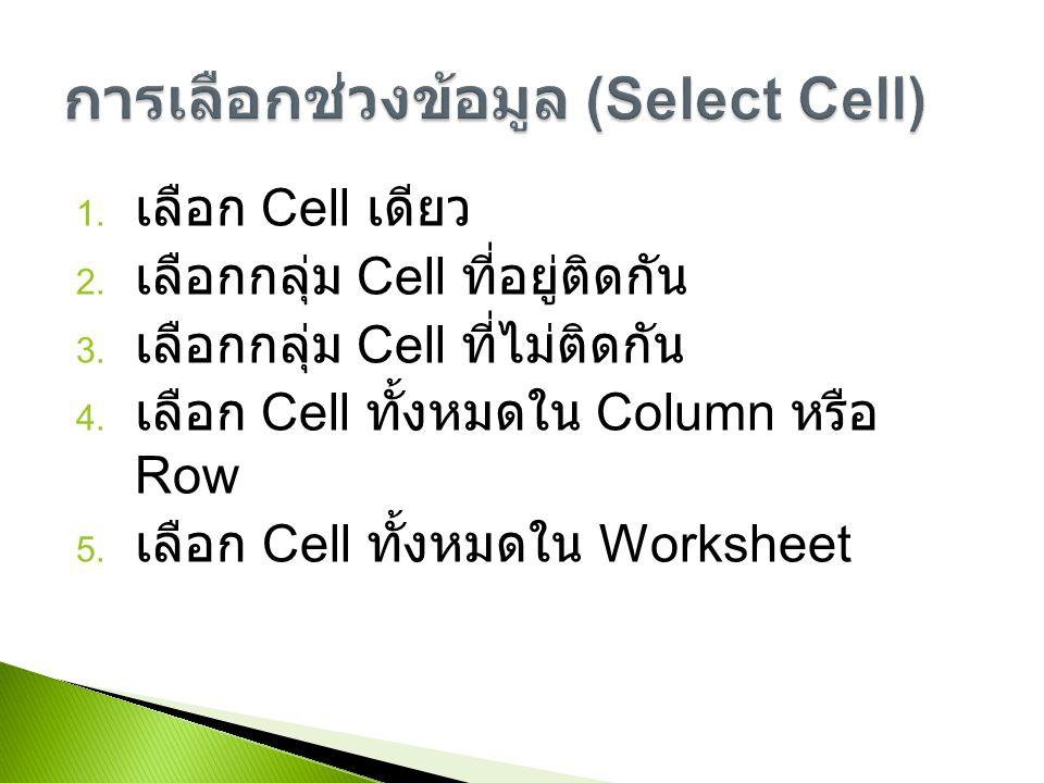 การเลือกช่วงข้อมูล (Select Cell)