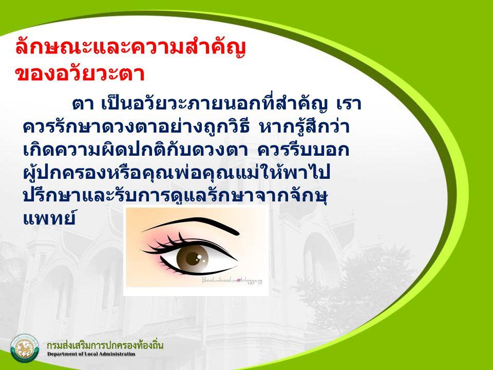 ลักษณะและความสำคัญของอวัยวะตา