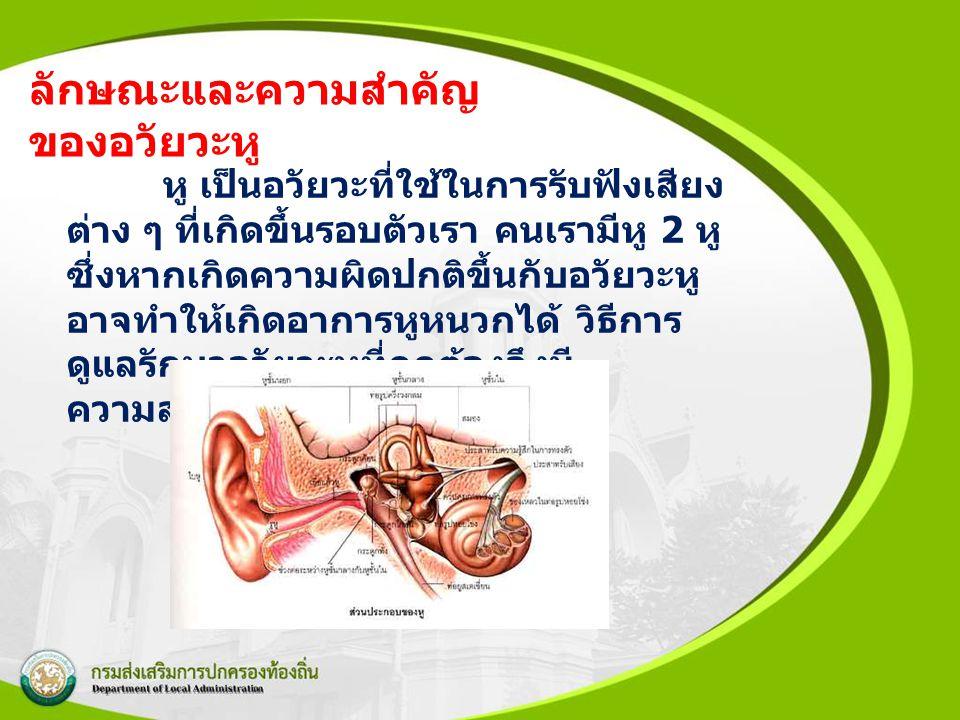 ลักษณะและความสำคัญของอวัยวะหู
