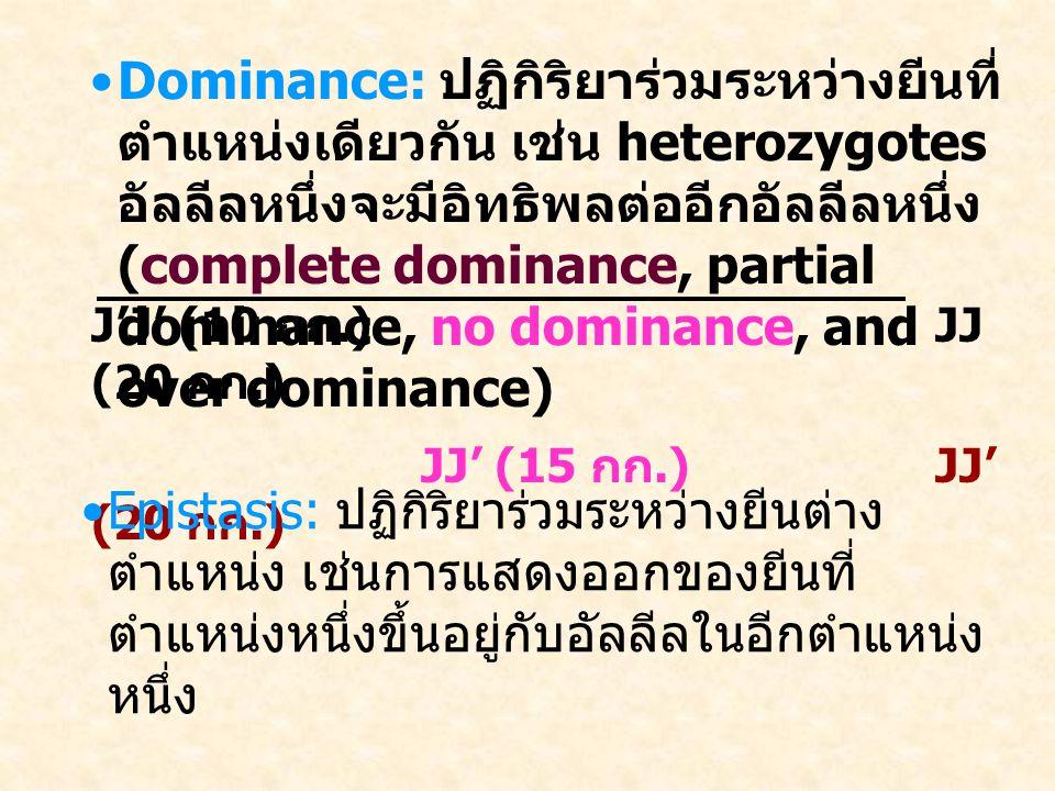 Dominance: ปฏิกิริยาร่วมระหว่างยีนที่ตำแหน่งเดียวกัน เช่น heterozygotes อัลลีลหนึ่งจะมีอิทธิพลต่ออีกอัลลีลหนึ่ง (complete dominance, partial dominance, no dominance, and over dominance)