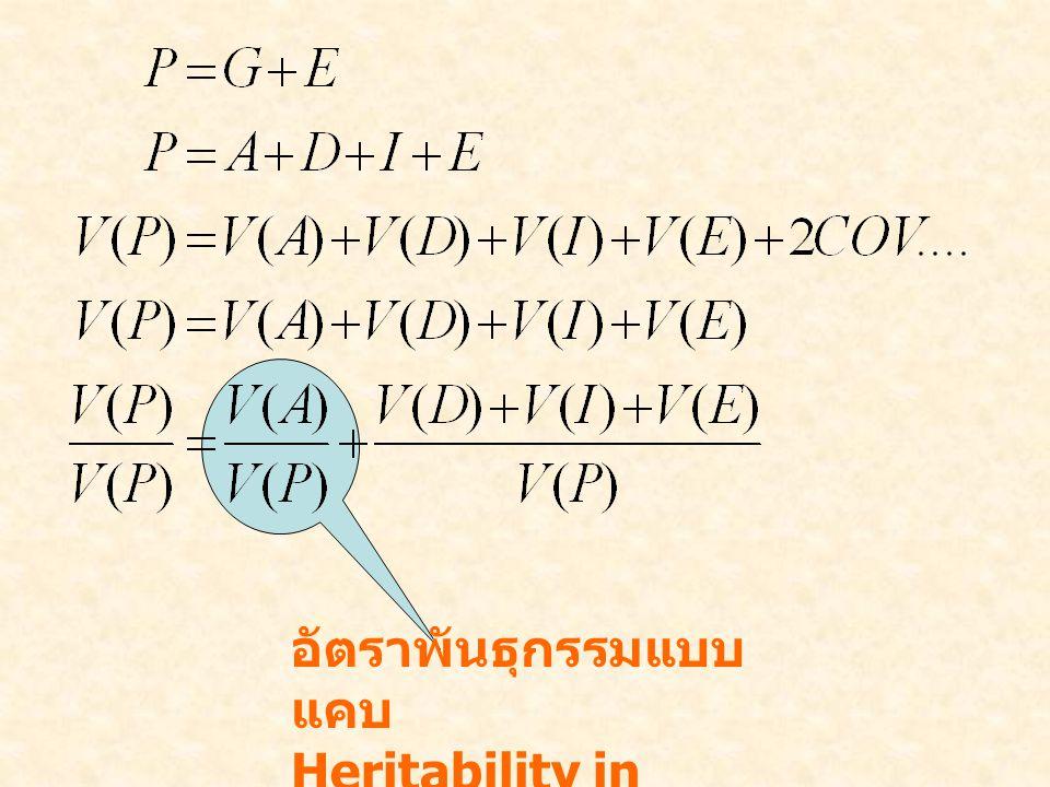 อัตราพันธุกรรมแบบแคบ Heritability in narrow sense, h2