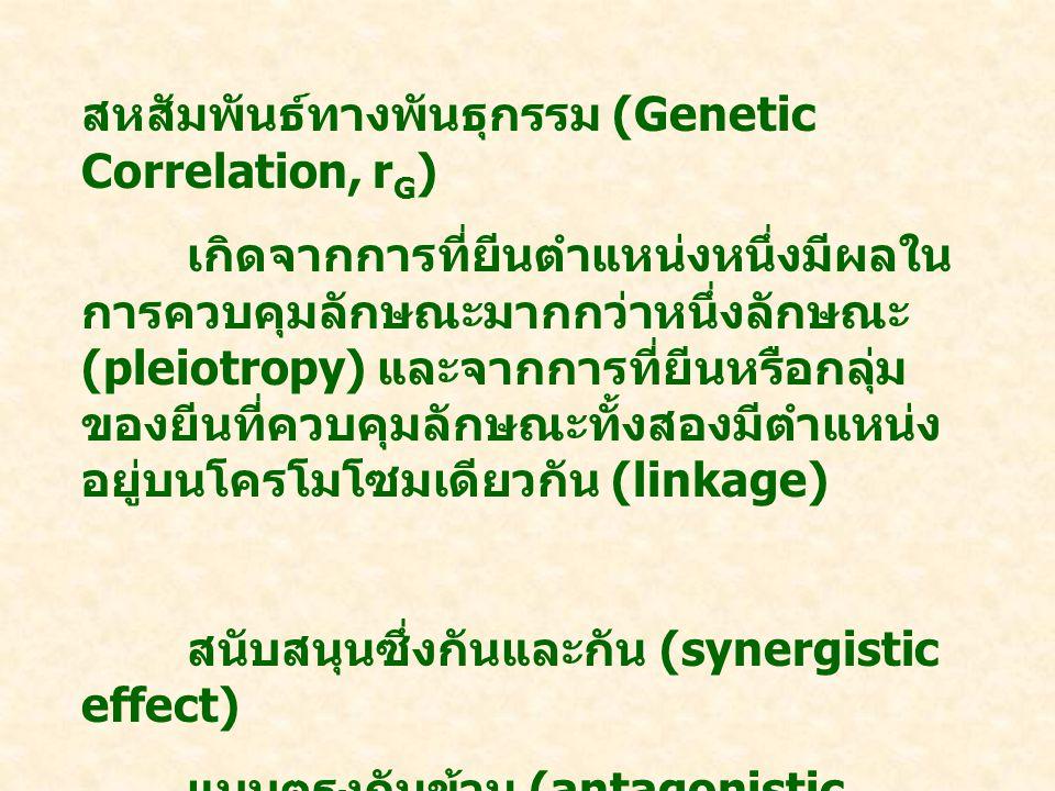สหสัมพันธ์ทางพันธุกรรม (Genetic Correlation, rG)
