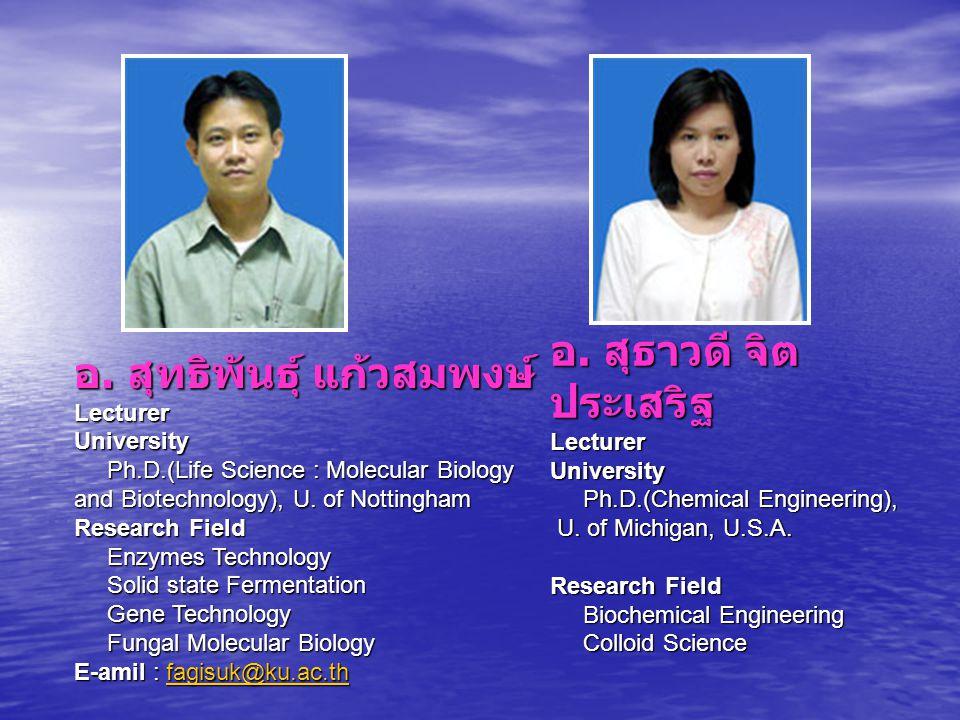 อ. สุทธิพันธุ์ แก้วสมพงษ์ Lecturer University Ph. D