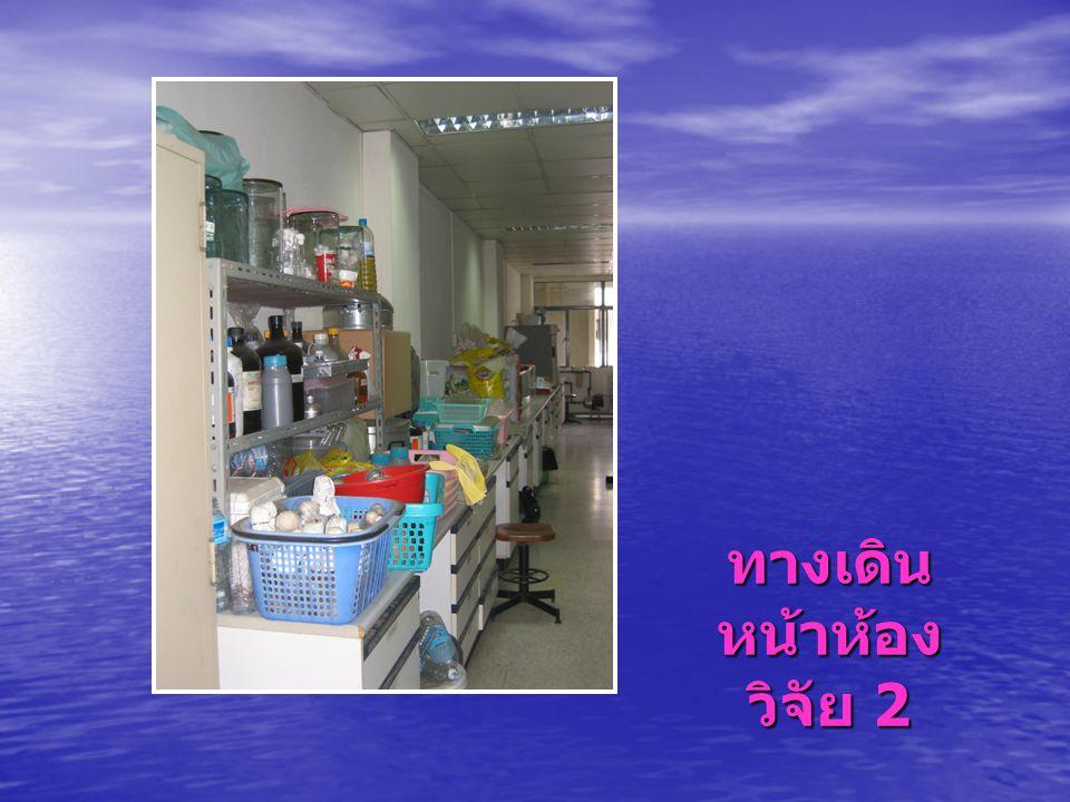 ทางเดินหน้าห้องวิจัย 2