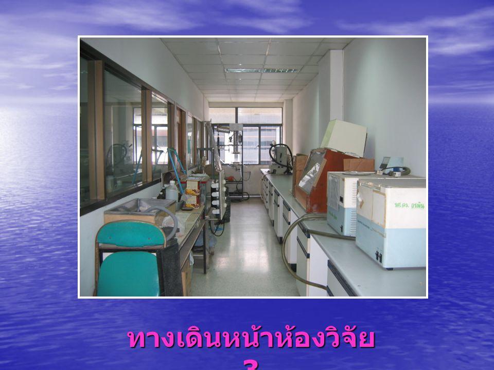 ทางเดินหน้าห้องวิจัย 3