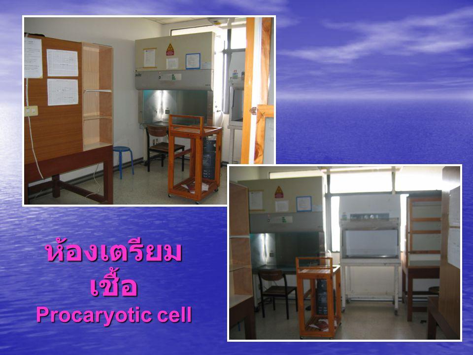 ห้องเตรียมเชื้อ Procaryotic cell