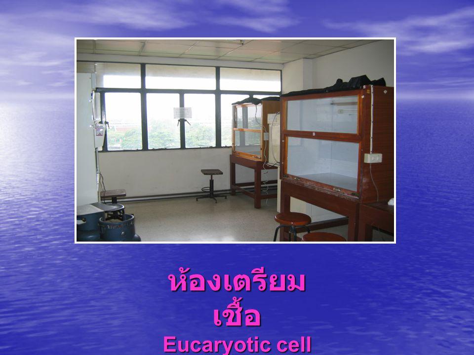 ห้องเตรียมเชื้อ Eucaryotic cell