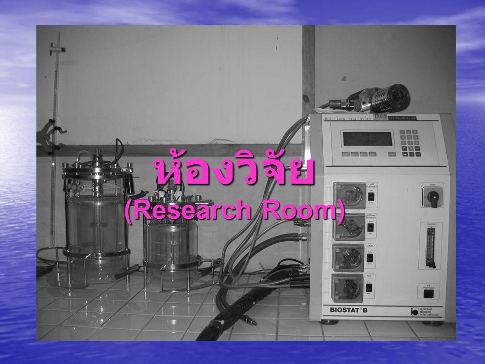 ห้องวิจัย (Research Room)