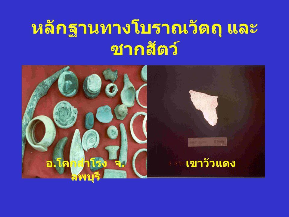 หลักฐานทางโบราณวัตถุ และซากสัตว์