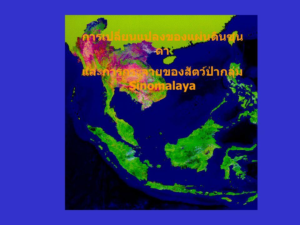 การเปลี่ยนแปลงของแผ่นดินซุนดา