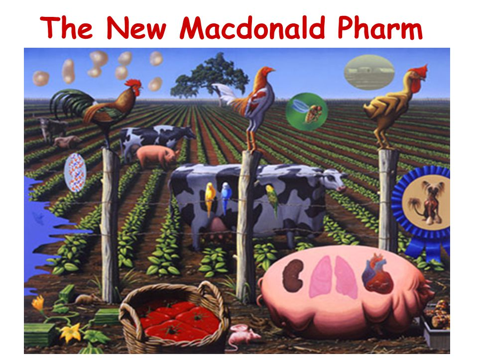 The New Macdonald Pharm