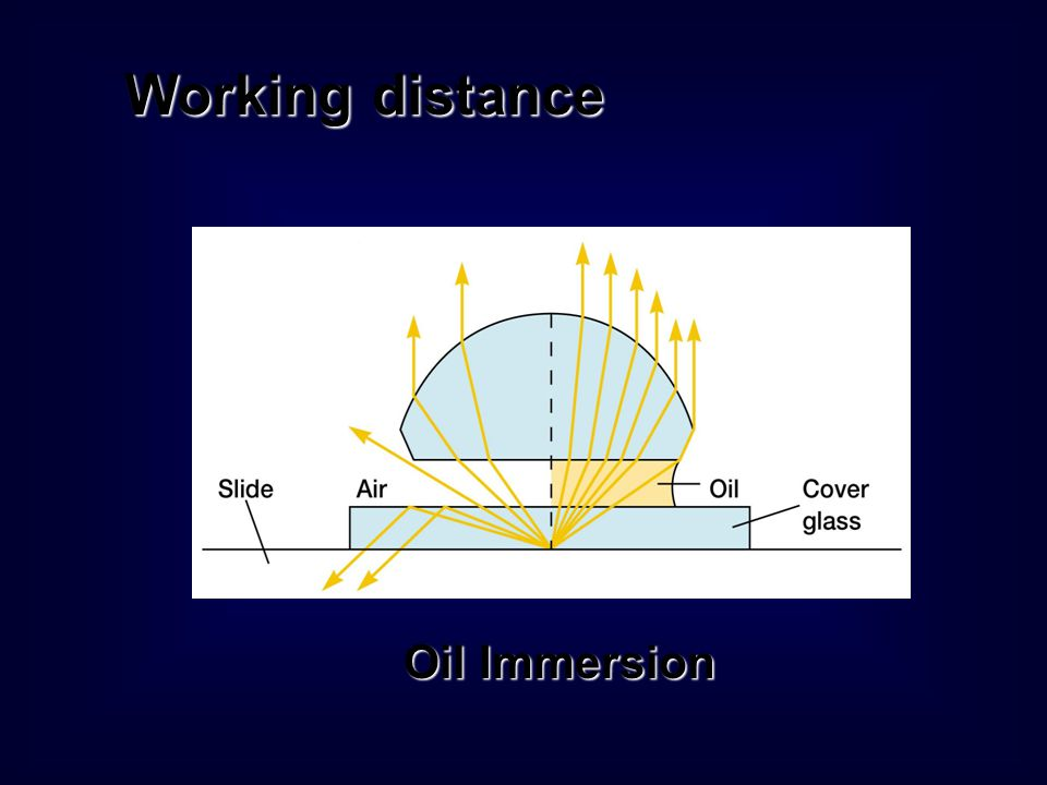 Working distance Oil Immersion