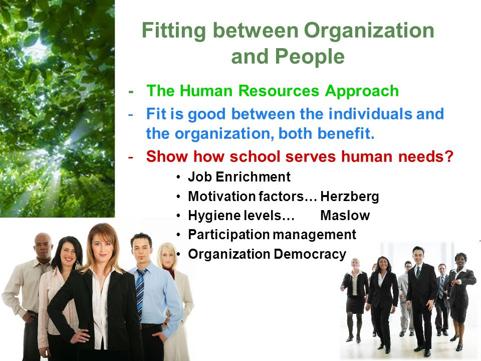 Fitting between Organization and People