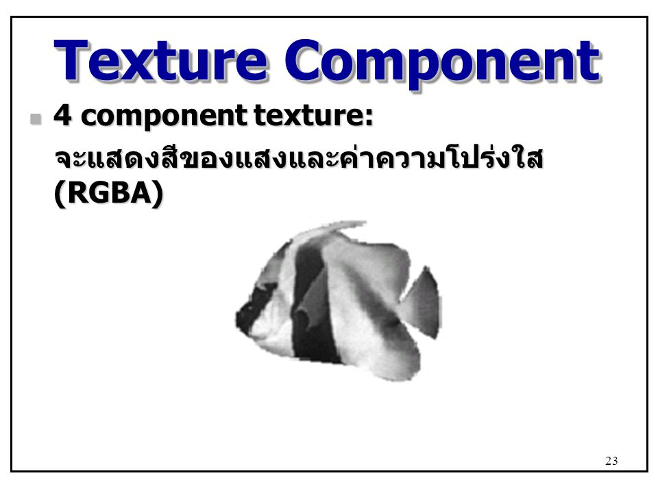 Texture Component 4 component texture: