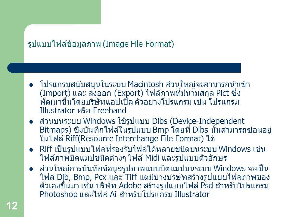รูปแบบไฟล์ข้อมูลภาพ (Image File Format)