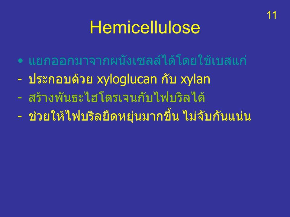 Hemicellulose แยกออกมาจากผนังเซลล์ได้โดยใช้เบสแก่