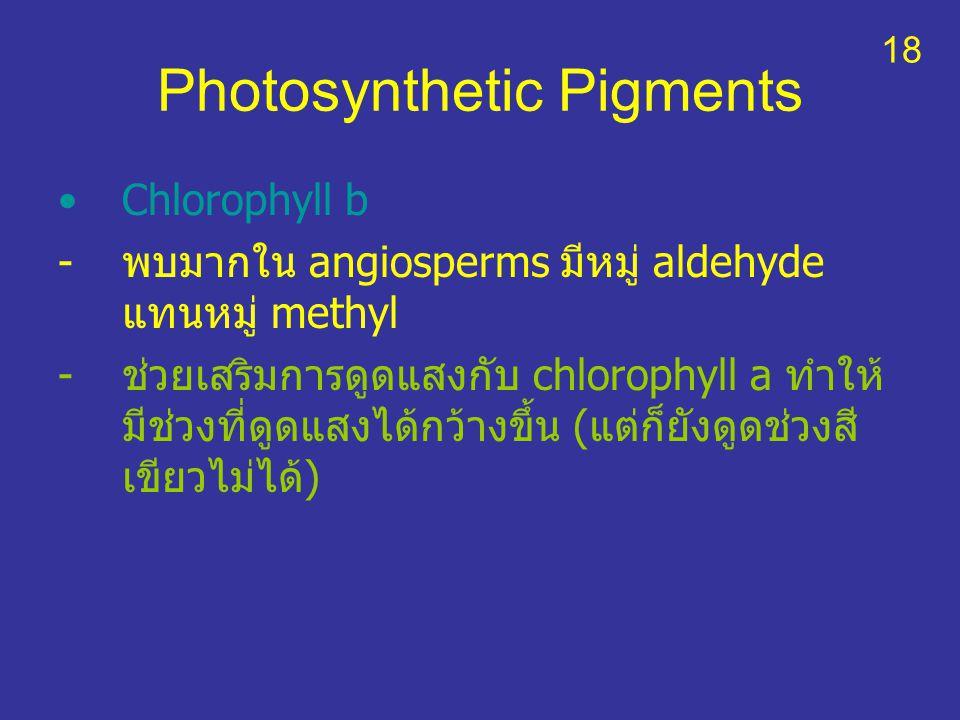 Photosynthetic Pigments