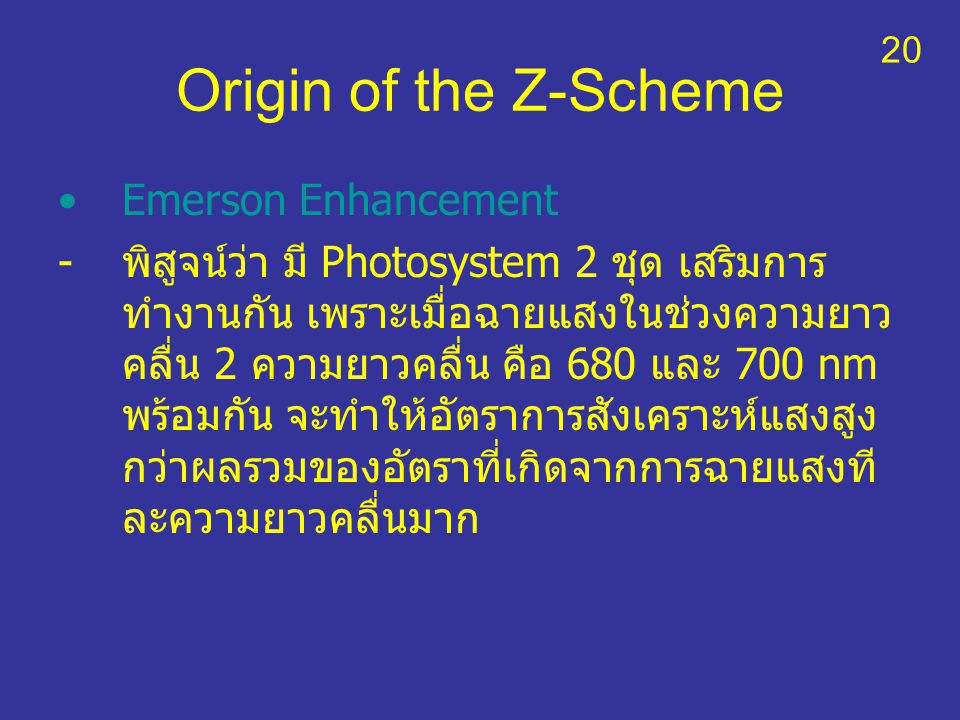 Origin of the Z-Scheme Emerson Enhancement