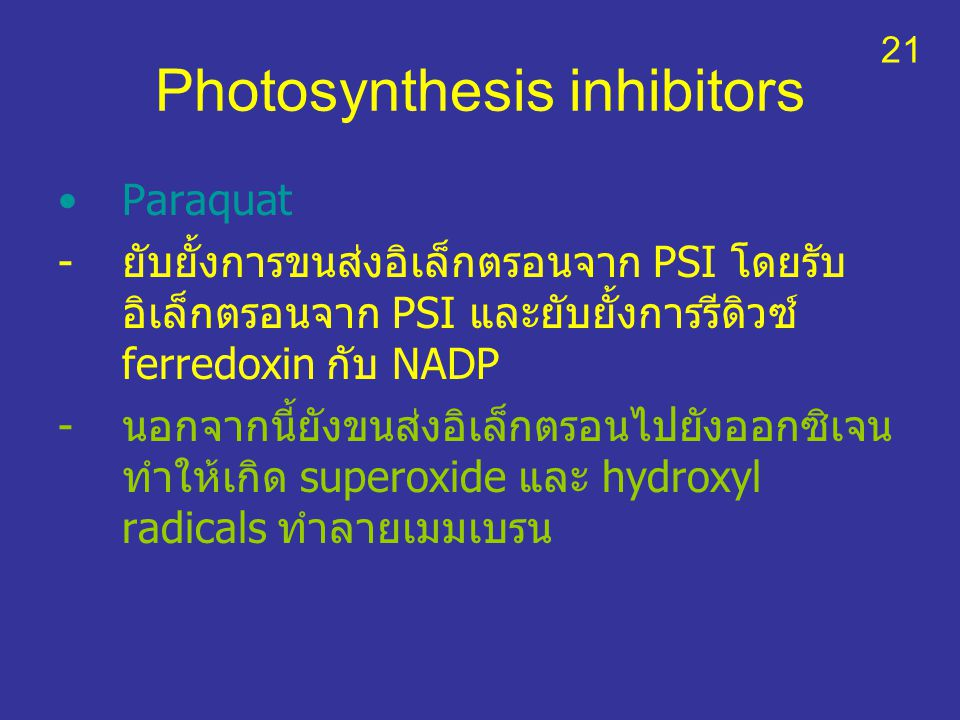 Photosynthesis inhibitors