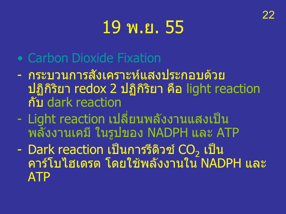 19 พ.ย. 55 Carbon Dioxide Fixation