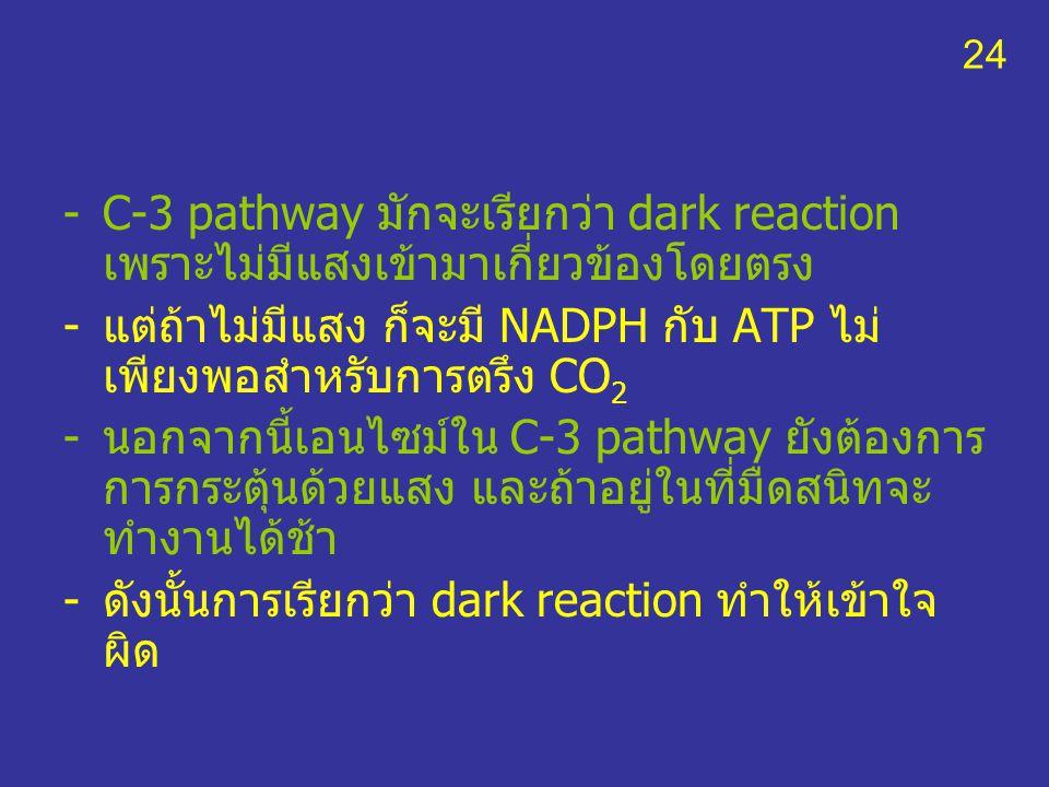 แต่ถ้าไม่มีแสง ก็จะมี NADPH กับ ATP ไม่เพียงพอสำหรับการตรึง CO2