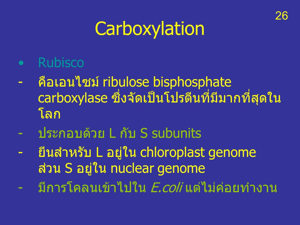 Carboxylation Rubisco