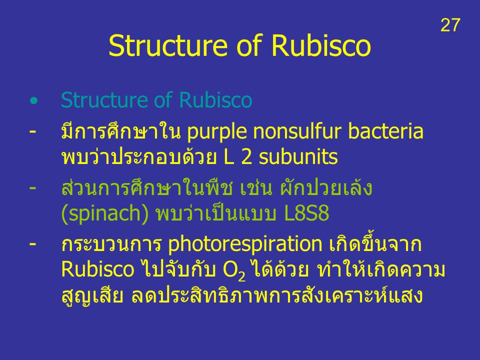 Structure of Rubisco Structure of Rubisco