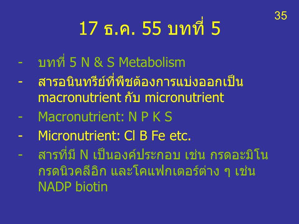 17 ธ.ค. 55 บทที่ 5 บทที่ 5 N & S Metabolism