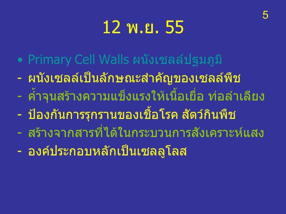 12 พ.ย. 55 Primary Cell Walls ผนังเซลล์ปฐมภูมิ