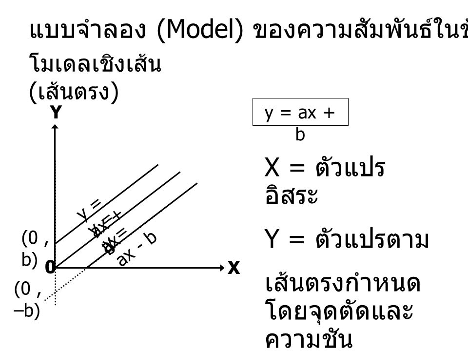 แบบจำลอง (Model) ของความสัมพันธ์ในข้อมูล