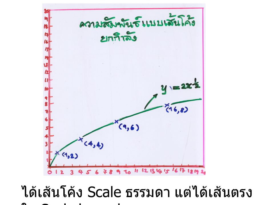 ได้เส้นโค้ง Scale ธรรมดา แต่ได้เส้นตรงใน Scale log × log