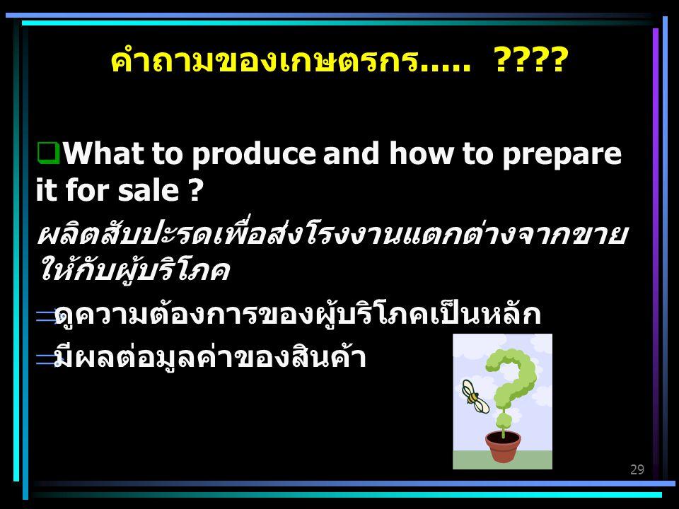 คำถามของเกษตรกร..... What to produce and how to prepare it for sale ผลิตสับปะรดเพื่อส่งโรงงานแตกต่างจากขายให้กับผู้บริโภค.