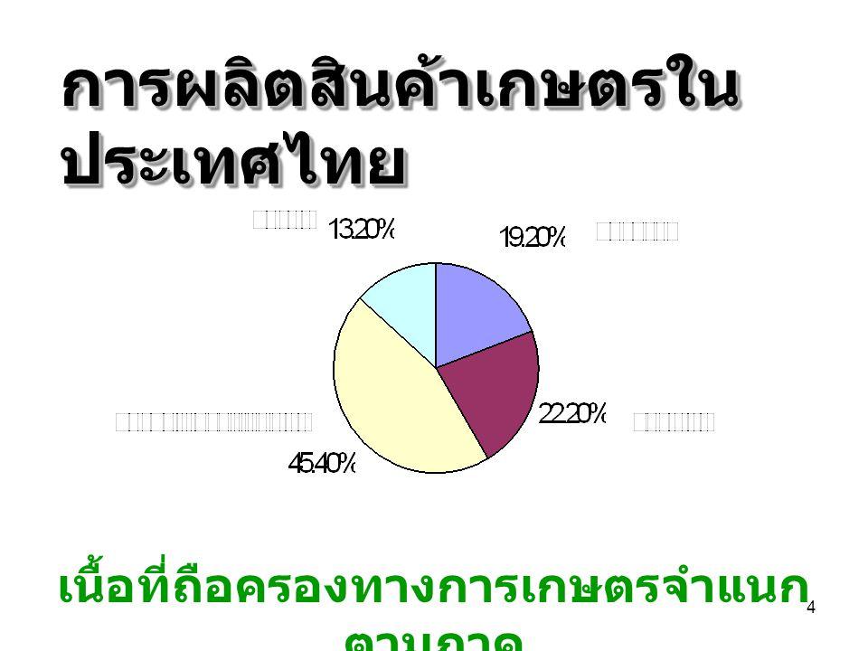การผลิตสินค้าเกษตรในประเทศไทย