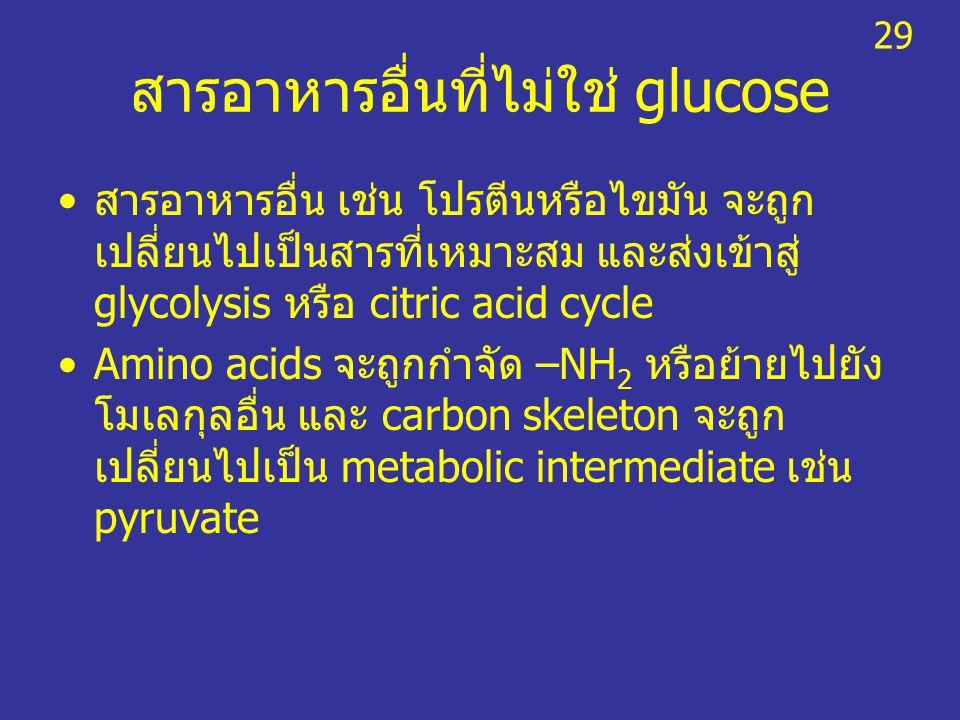 สารอาหารอื่นที่ไม่ใช่ glucose