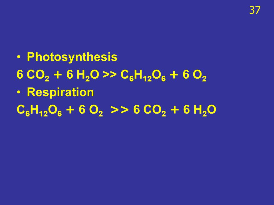 Photosynthesis 6 CO2 + 6 H2O >> C6H12O6 + 6 O2 Respiration